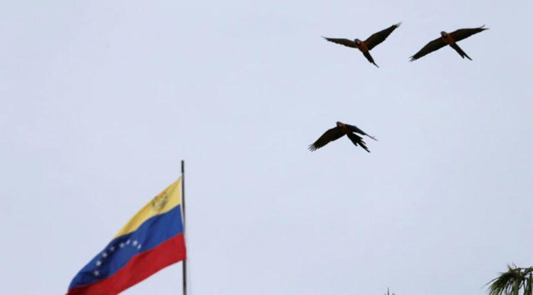 venezuela, juan guaido, nicolas maduro,